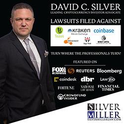 David Silver